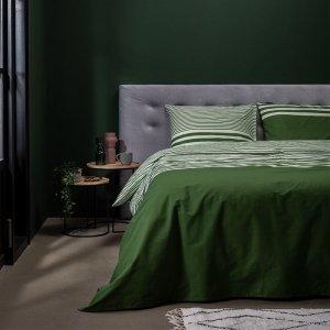 Green Lining - Groen - 140 x 220
