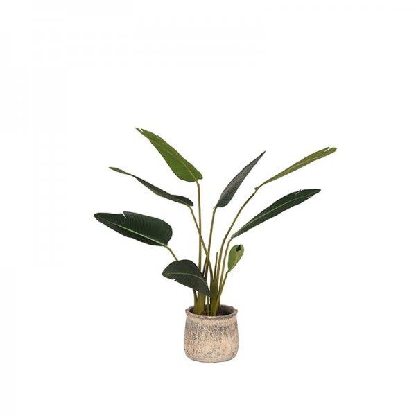 Kunstplant Strelitzia - Groen