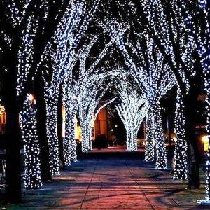 LED Lichtslangen Cold White - 5 of 10 Meter