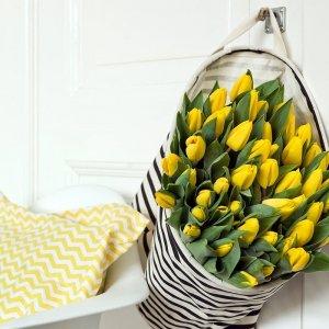 35 stuks Bloembollen - Tulpen Geel